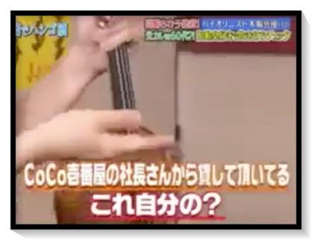 木嶋真優、ヴァイオリン